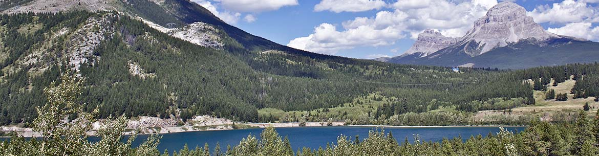 Lusicich, Crowsnest Pass, AB (Photo by NCC)