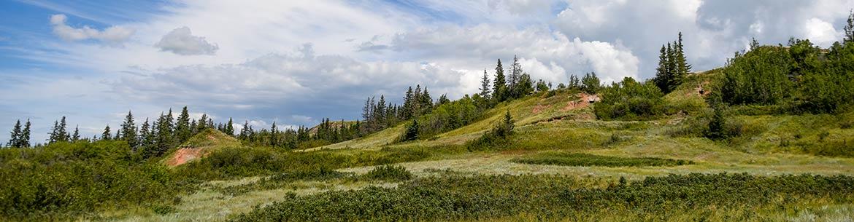Meyers property, Battle River, Alberta (Photo by NCC)