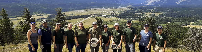 Alberta development team juniper harvest, Crowsnest Pass (Photo by NCC)