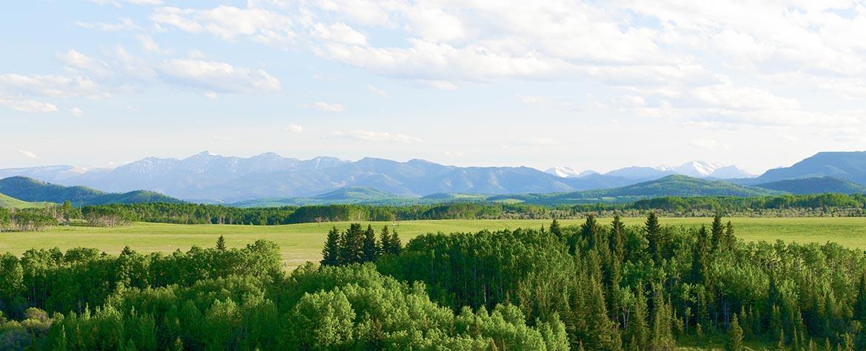 Ranch OH, Aire  naturelle Bow, Alb. (Photo de Karol Dabbs)