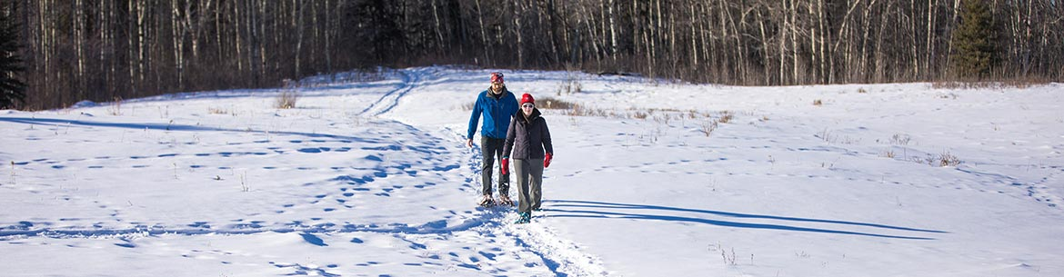 Greg Davies and Jennifer Bawden, Buncberry Meadows, AB (Photo by Brent Calver)