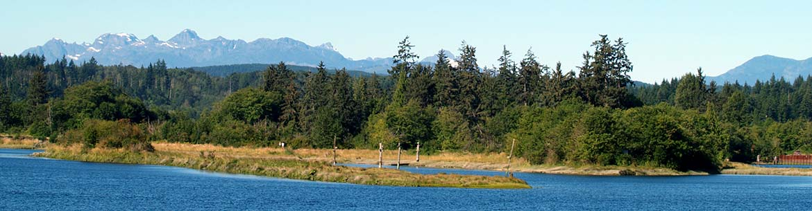 Baikie Island sits in the middle of the Campbell River Estuary