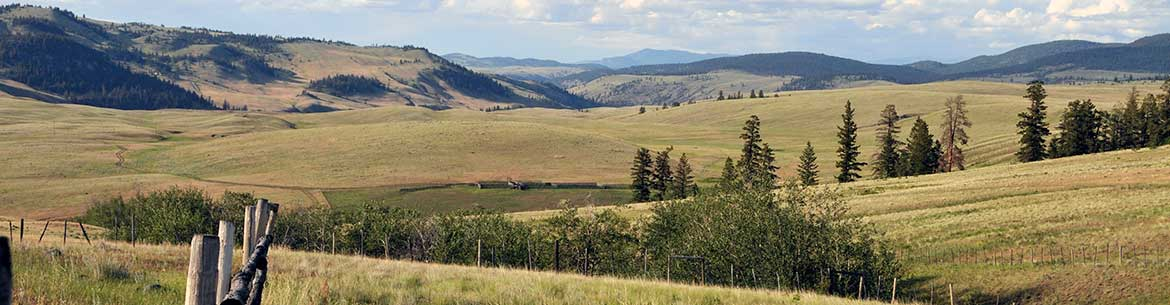 The grasslands of Frolek Ranch, BC (Photo by NCC)