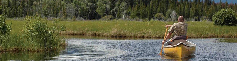 Canoeing on Daphne Ogilvie Nature Sanctuary