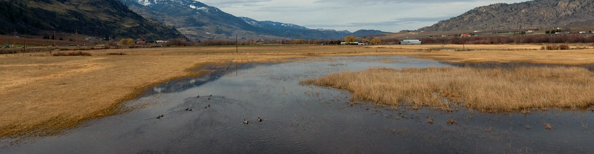 Osoyoos Oxbows: Ted Pendergraft and Sons Conservation Area (Photo by Tim Feeney)