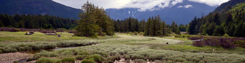 Tidal Flats, Bella Coola, BC (Photo by Michael Wigle)