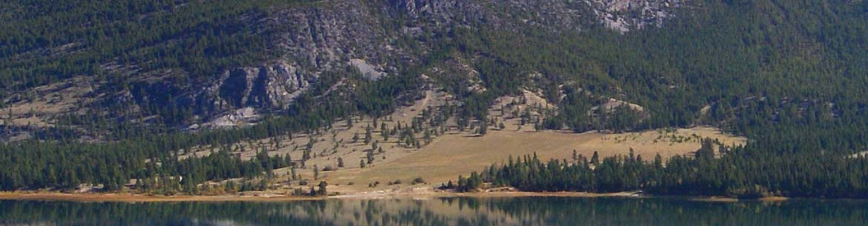 Columbia Lake-Lot 48 (Photo by Steve Short)