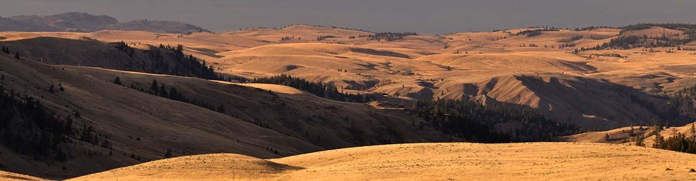 Frolek Grasslands, BC (Photo by Tim Ennis/NCC)