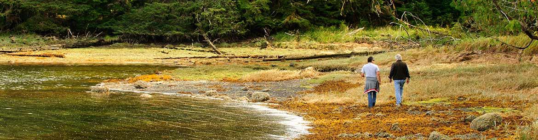 Gullchucks Estuary, BC