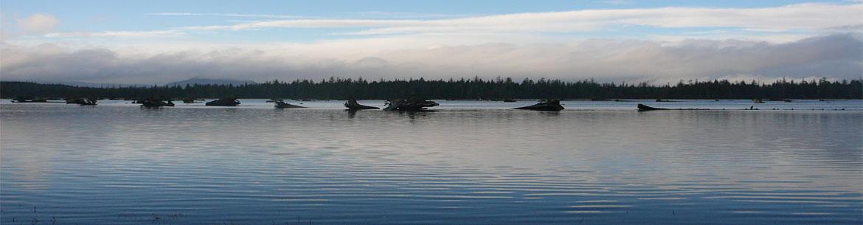 Haida Gwaii's coastline (Photo by NCC)
