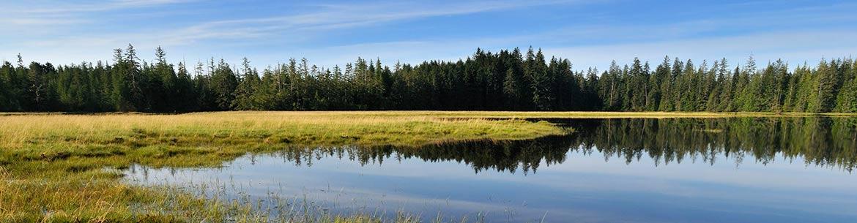 Kumdis Estuary, Haida Gwaii