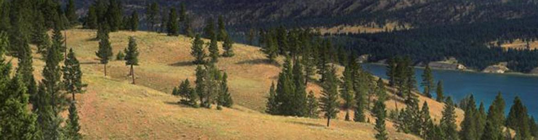 Thunder Hill Ranch