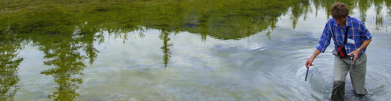 Water sampling in a wetland