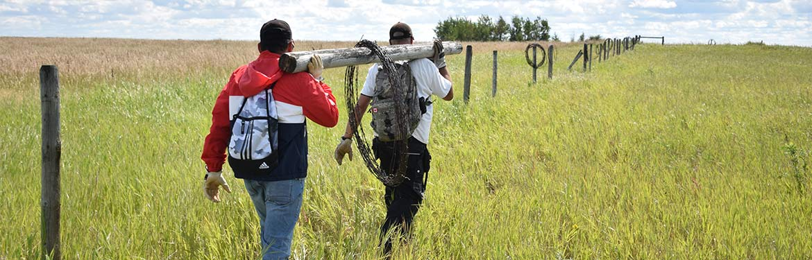Volunteers carrying barbed wire, AB (Photo by NCC)