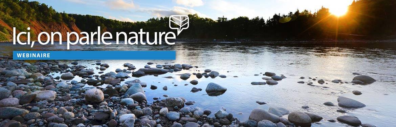 Rivière Crabbes, T.-N.-L. (Photo de Mike Dembeck)