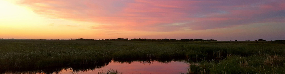 Sunset over Douglas Marsh (Photo by NCC)
