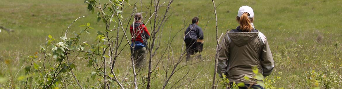Conservation Volunteers event, Riding Mountain Aspen Parkland, MB (Photo by NCC)