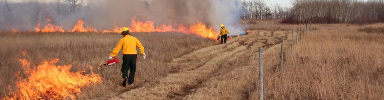Manitoba, Tall-grass Prairie Fire Crew (Photo by NCC)