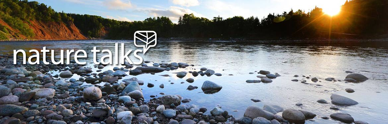 Crabbes River