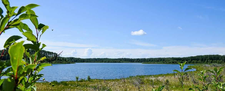 Coyote Lake, AB (Photo by Carys Richards).