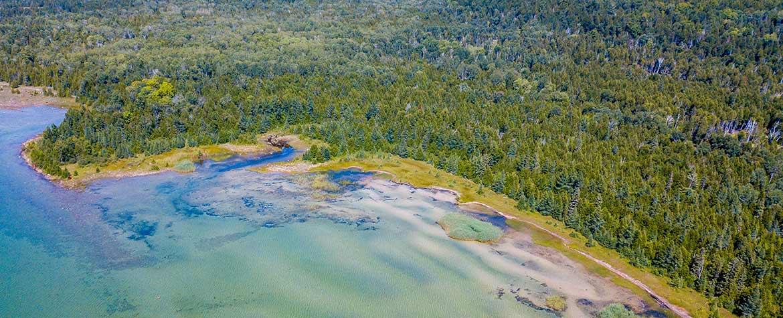 Vidal Bay, ON (Photo by Jamin Hudson)