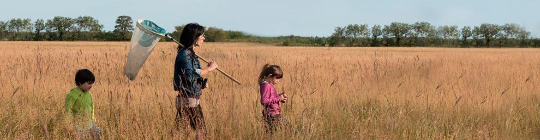 The Forks Prairie Garden, Manitoba (Photo by Thomas Fricke)