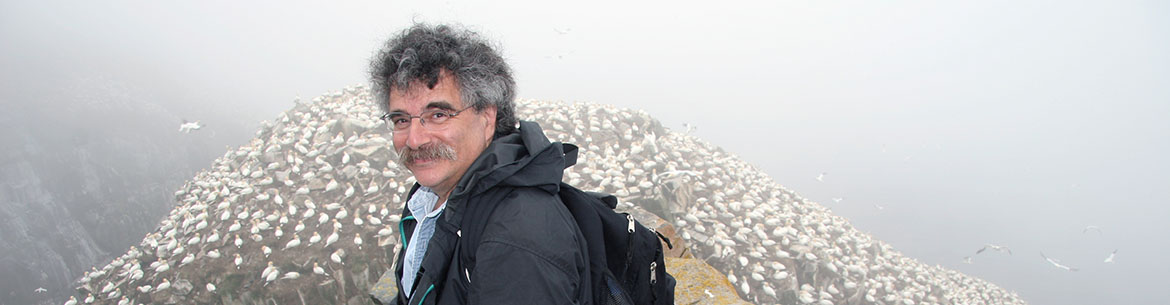 Dr. Bill Freedman, Cape St. Mary's, NL (Photo by Sheldon Bowles)