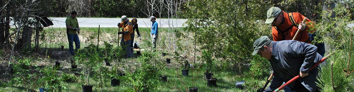 Volunteers from Lotek help create a riparian buffer by planting native trees (Photo by NCC)