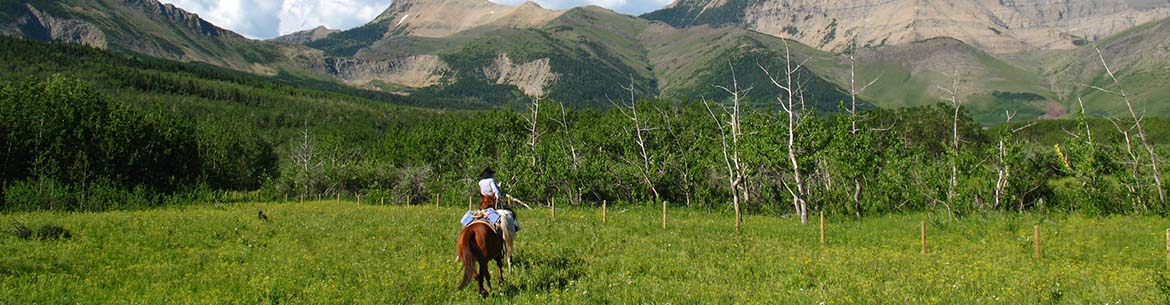 Marr Jack Property, Waterton, AB (Photo by NCC)
