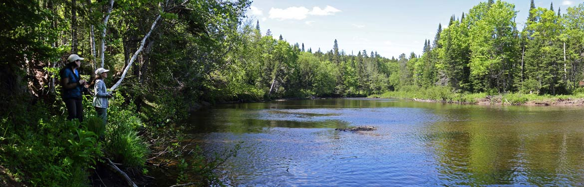 Bartholomew River, NB (Photo by Mike Dembeck)
