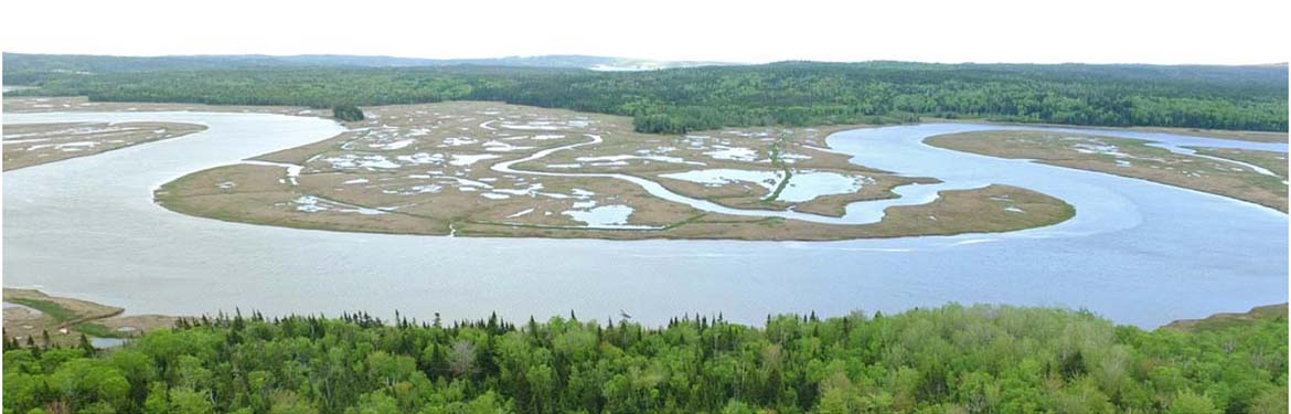 Aerial view of the Musquash Estuary (Photo by Mike Dembeck)