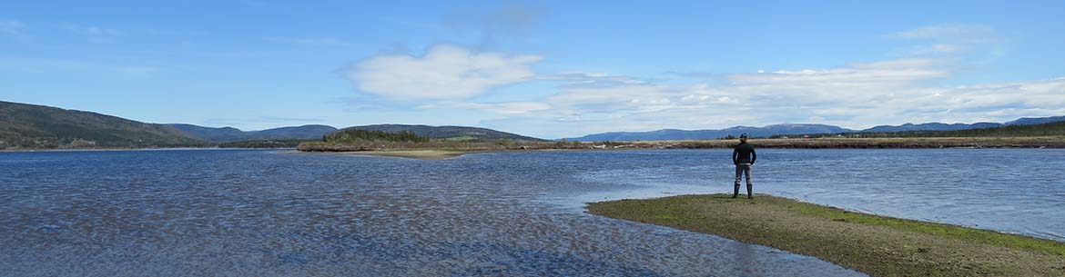 Conservation Biologist Megan Lafferty looks out over the Grand Codroy Estuary (photo by NCC)