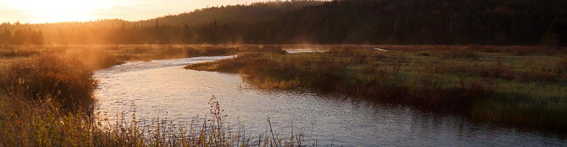 The Salmonier River (Photo by M. Dembeck)
