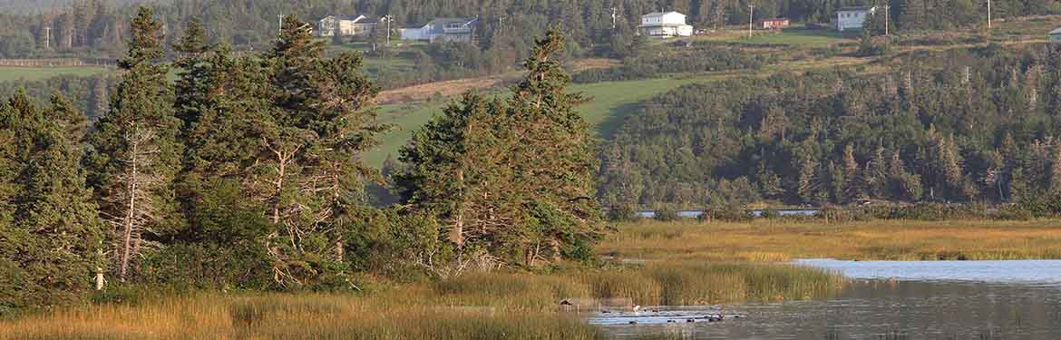 Codroy Valley Estuary, NL (Photo by Mike Dembeck)