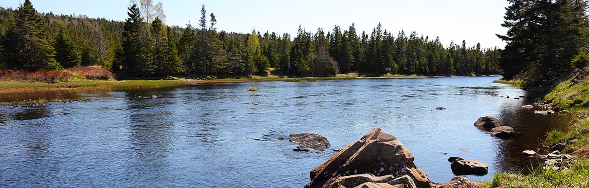 Salmonier River, NL (Photo by Mike Dembeck)