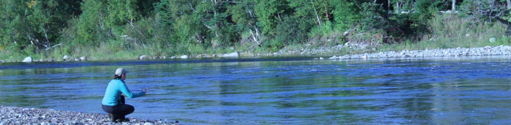 CNC a pour but de conserver des propriétés le long de la rivière Crabbes, proche de St. Fintan's en Terre-Neuve-et-Labrador (photo de CNC)