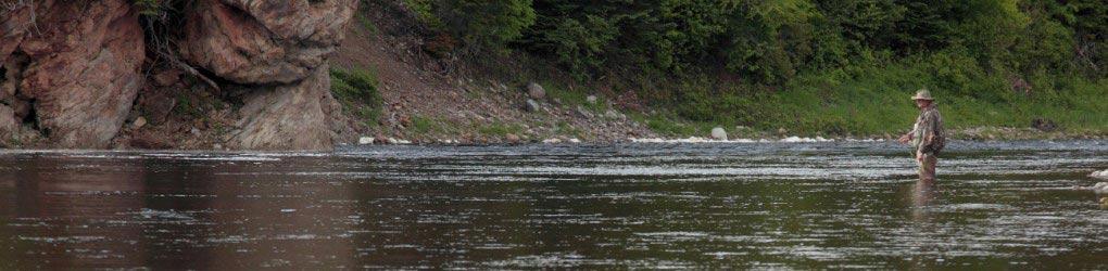 Pêcheur, Réserve naturelle Crabbes River, T.-N.-L (Photo de Mike Dembeck)