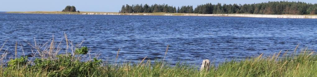 Île de Sandy Point, T.-N. (Photo par CNC)