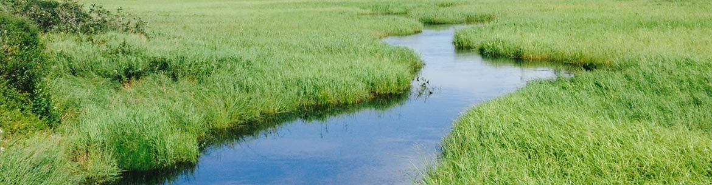 Musquodoboit River, NS (Photo by NCC)