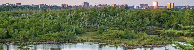 Halifax skyline viewed from the future Halifax Wilderness Park (Photo by Irwin Barrett)