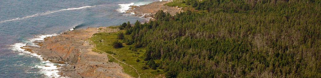 Gaff Point in Nova Scotia's South Shore (photo by Mike Dembeck)