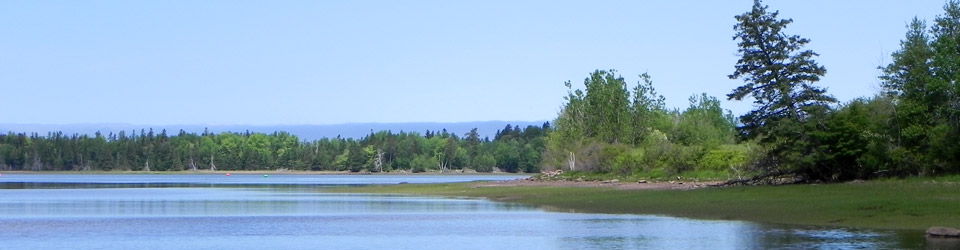 Pugwash Estuary, NS (Photo by NCC)