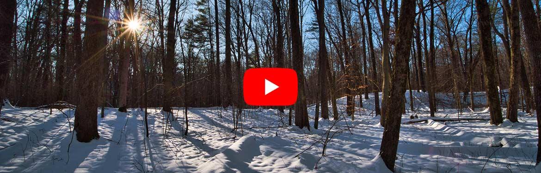Backus Woods, ON (Photo by Gregg McLachlan)