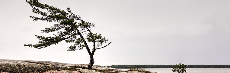 Georgian Bay, ON (Photo by Adobe Stock)