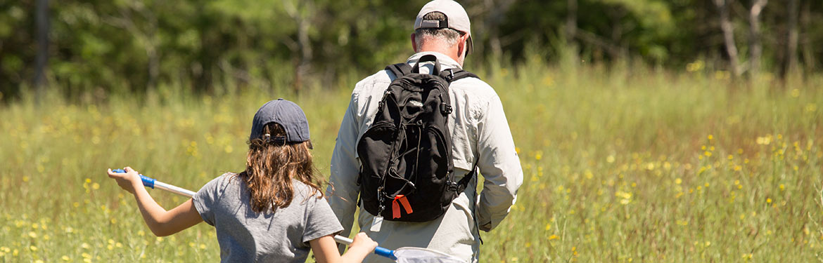 Rice Lake Plains butterfly count, ON (Photo by NCC)