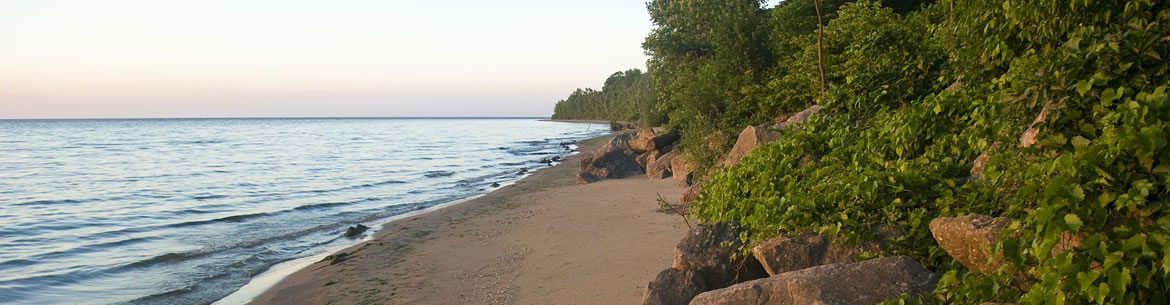Shore of the Novatney Property, Pelee Island, ON (Photo by Sam Brinker, OMNR)