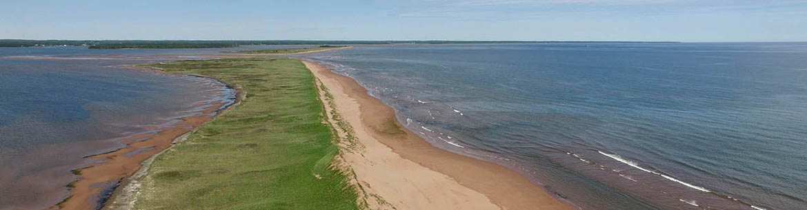 The Cascumpec Sandhills, Prince Edward Island (Photo by Mike Dembeck)