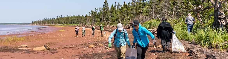 Shoreline clean up (Photo by Stephen DesRoches)