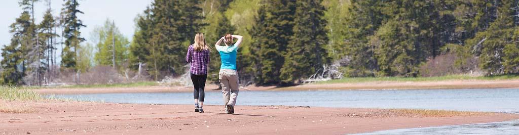 Visitors walking along the beach on Thomas Island, PEI (Photo by Sean Landsman)