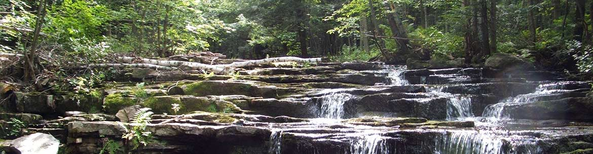 Cascades at Covey Hill (Photo by David M Green)